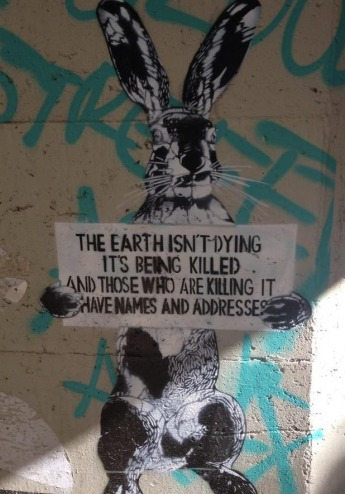 the-earth-isnt-dying